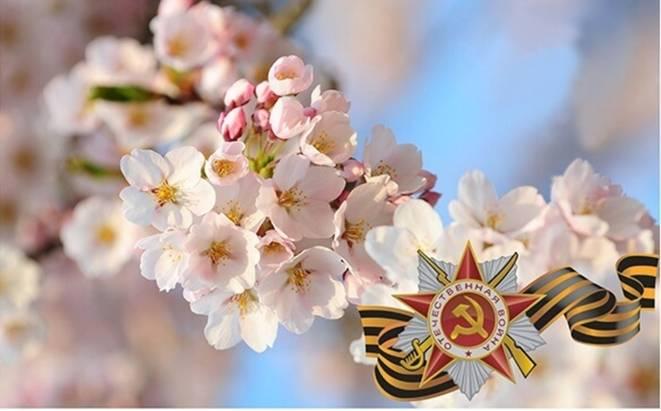 ГРАФИК РАБОТЫ ВМАЕ